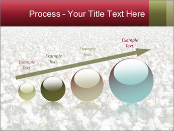 Fields of Cotton PowerPoint Template - Slide 87