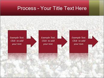 Fields of Cotton PowerPoint Template - Slide 88