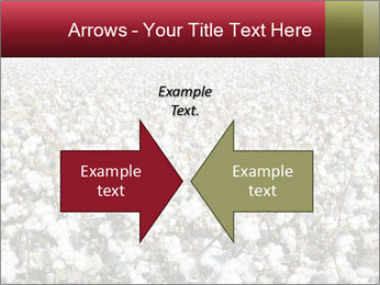 Fields of Cotton PowerPoint Templates - Slide 90