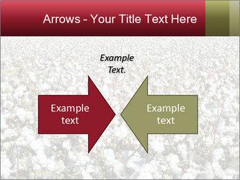 Fields of Cotton PowerPoint Template - Slide 90