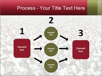 Fields of Cotton PowerPoint Template - Slide 92