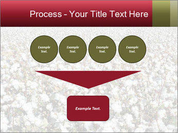 Fields of Cotton PowerPoint Template - Slide 93