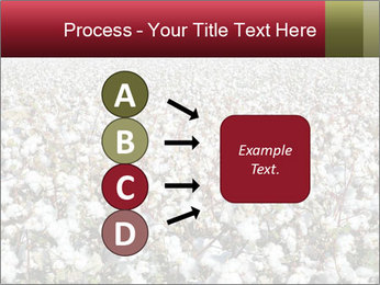 Fields of Cotton PowerPoint Template - Slide 94