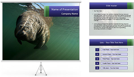 Florida Manatee PowerPoint Template