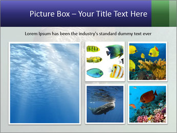 Florida Manatee PowerPoint Template - Slide 19
