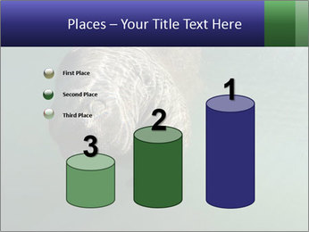 Florida Manatee PowerPoint Template - Slide 65
