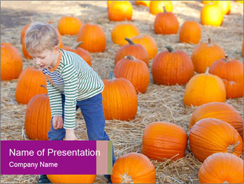 Boy Picking Pumpkins PowerPoint Template