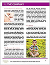 0000090607 Word Template - Page 3