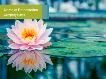 Beautiful Pink Lotus PowerPoint Template - Slide 1