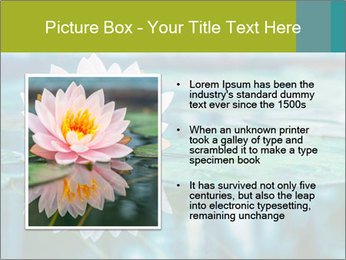 Beautiful Pink Lotus PowerPoint Template - Slide 13