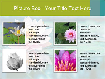 Beautiful Pink Lotus PowerPoint Template - Slide 14
