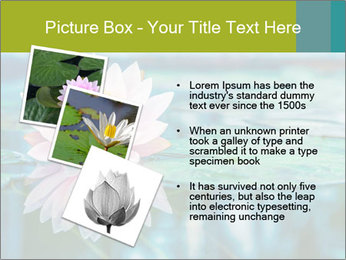 Beautiful Pink Lotus PowerPoint Template - Slide 17