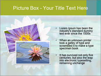 Beautiful Pink Lotus PowerPoint Template - Slide 20
