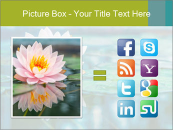 Beautiful Pink Lotus PowerPoint Template - Slide 21