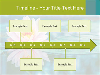 Beautiful Pink Lotus PowerPoint Template - Slide 28