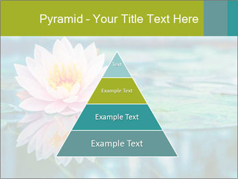 Beautiful Pink Lotus PowerPoint Template - Slide 30