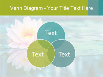 Beautiful Pink Lotus PowerPoint Template - Slide 33