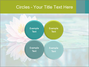 Beautiful Pink Lotus PowerPoint Template - Slide 38