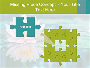 Beautiful Pink Lotus PowerPoint Template - Slide 45