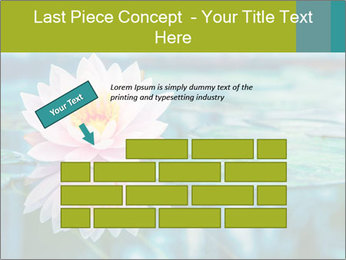 Beautiful Pink Lotus PowerPoint Template - Slide 46