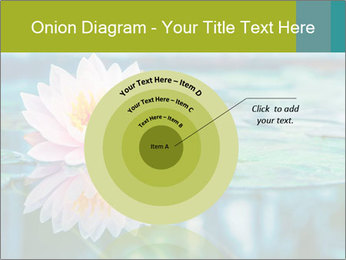 Beautiful Pink Lotus PowerPoint Template - Slide 61
