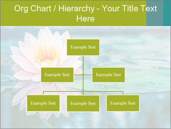 Beautiful Pink Lotus PowerPoint Template - Slide 66