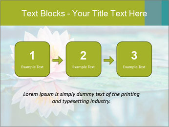 Beautiful Pink Lotus PowerPoint Template - Slide 71