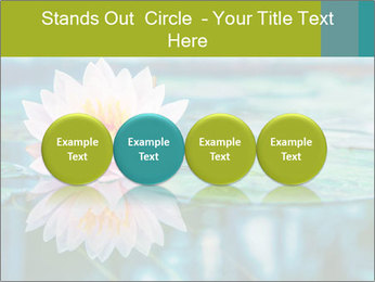 Beautiful Pink Lotus PowerPoint Template - Slide 76
