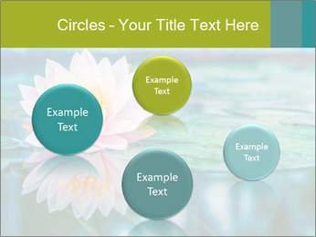 Beautiful Pink Lotus PowerPoint Template - Slide 77