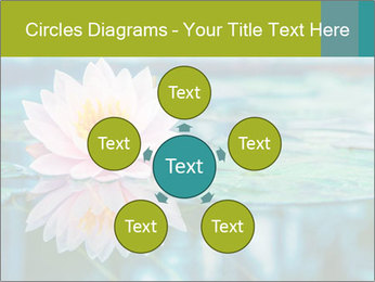 Beautiful Pink Lotus PowerPoint Template - Slide 78