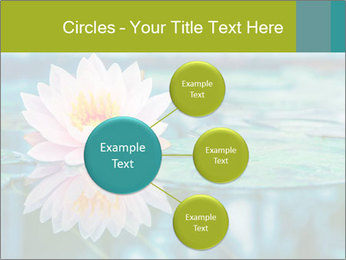 Beautiful Pink Lotus PowerPoint Template - Slide 79