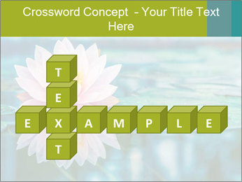 Beautiful Pink Lotus PowerPoint Template - Slide 82