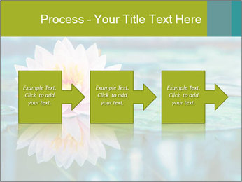Beautiful Pink Lotus PowerPoint Template - Slide 88