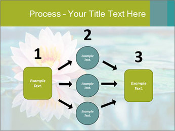 Beautiful Pink Lotus PowerPoint Template - Slide 92