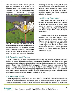0000090608 Word Template - Page 4