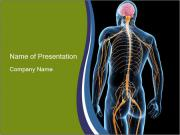 Medical nervous system PowerPoint Template