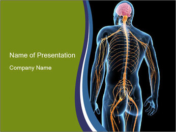 Medical nervous system PowerPoint Template - Slide 1