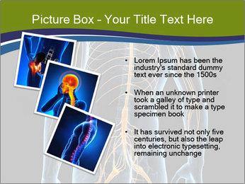 Medical nervous system PowerPoint Templates - Slide 17