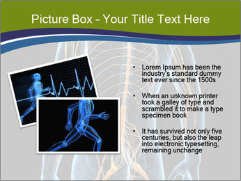 Medical nervous system PowerPoint Template - Slide 20