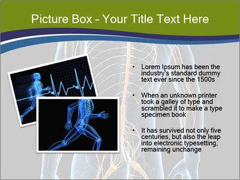 Medical nervous system PowerPoint Templates - Slide 20