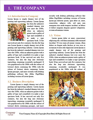 0000090615 Word Template - Page 3