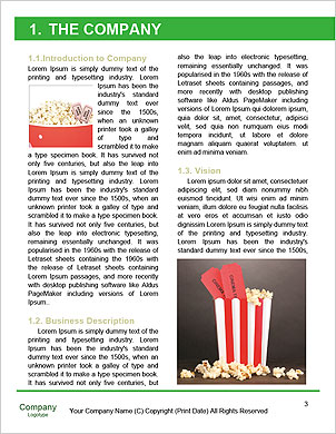 0000090618 Word Template - Page 3