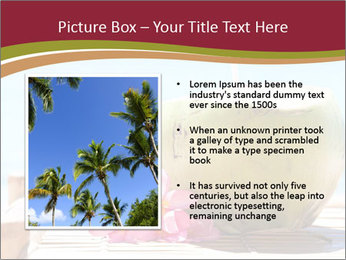 Tropical fresh coconut cocktail PowerPoint Template - Slide 13