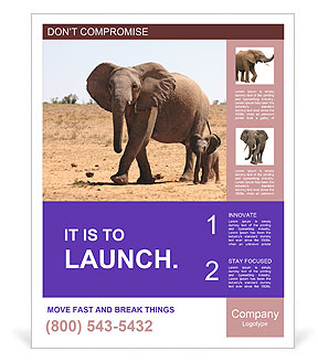 0000090631 Poster Templates