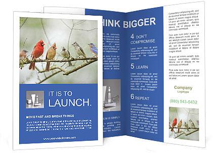 0000090636 Brochure Templates