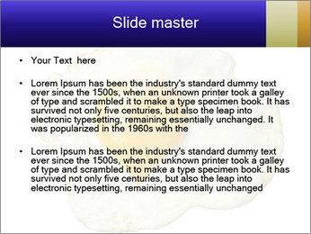 Fried egg PowerPoint Templates - Slide 2