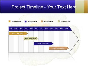 Fried egg PowerPoint Templates - Slide 25
