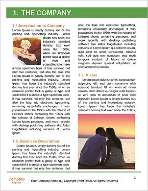 0000090645 Word Template - Page 3
