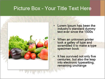Durian PowerPoint Templates - Slide 13