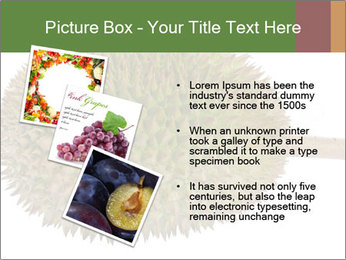 Durian PowerPoint Templates - Slide 17